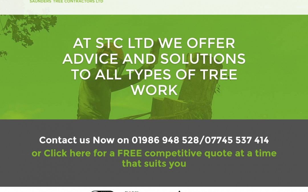 New Website for STC